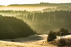 an icy morning (Wöwwesch) Tags: sunrise walking shadows frozen hills sony aonyalpha ilce6000 morning cold spring landscape outdoor golden trees eifel germany nature