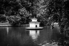 Eigenheim-am-See.jpg (NoBudgetPhoto.de) Tags: rosengarten landschaft see zweibrücken schwarzweiss haus woods sommer achromat rheinlandpfalz deutschland de