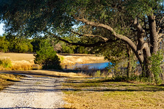 FlatCreek_016 (allen ramlow) Tags: texas hill country sony alpha flat creek landscape