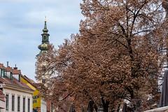 Tkalciceva street in Zagreb (Yvan Rouxel) Tags: cityofzagreb croatia january tkalcicevastreet wpcroatia winter zagreb hrv