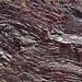 Fault in ribbon cherts (Franciscan Complex, Lower Jurassic-Lower Cretaceous; southern Marin Peninsula, San Francisco Bay, California, USA) 4
