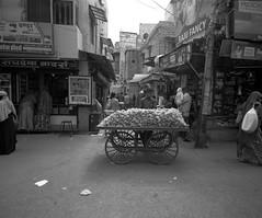1913 (The Dent.) Tags: jodhpur mamiya 7 acros 100 dilution e 6 min