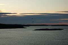 Белое море (kurganovivan) Tags: sea whitesea nature белоеморе море карелия природа север пейзаж landscape