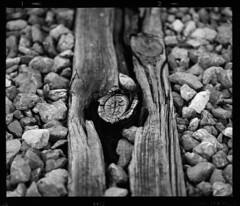 Scan 86 (Champy88) Tags: mamiyarb67pros mamiyakl3590l mamiya scanviewscanmate5000 scanmate5000 escanerdetambor drumscanner ilfordfp4plus ilford fp4 mediumformat formatomedio spurhrx spur 6x7 67 rb67 blackandwhite idealformat analog abandoned film filmphotography filmisnotdead negative bn blancoynegro noiretblanc