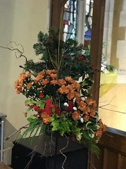 Christmas flower display
