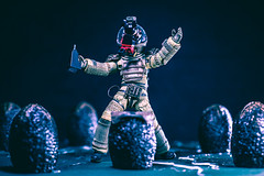 Surprise MF! (3rd-Rate Photography) Tags: alien disney lego neca mickeymouse xenomorph egg facehugger canon toy toyphotography jacksonville florida 3rdratephotography earlware 365 50mm 5dmarkiii