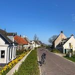 Spring in Rijswijk, Gelderland, Netherlands - 2365 thumbnail