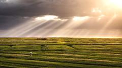 Westerhever (sjaschinski) Tags: light sundown nikon 70200 f4 nf westerhever nordfriesland deutschland sonnenuntergang schatten lightrays lichtstrahlen nordsee dramatic cloud