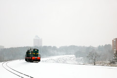 ЧМЭ3-6387 (Life and Photo) Tags: train railroad railway rails road locomotive loco landscape landschaft belarus mogilev tree trees tower city building beautiful winter white snow snowfall windstorm чмэ3 чмэ36387