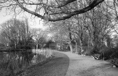 Broerse park (Arne Kuilman) Tags: amsterdam nikon fm3a 28mm luckyshd iso100 id11 7minutes homedeveloped stock analogue film broersepark volière amstelveen