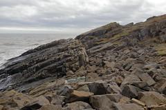 Cliffs,Collieston_Mar 19_448 (Alan Longmuir.) Tags: grampian aberdeenshire collieston cliffs