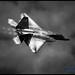 A Mostly Monochrome Take On F-22 Raptor in Burner & Pulling Vapes