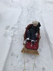 """Dani in Her Sled • <a style=""""font-size:0.8em;"""" href=""""http://www.flickr.com/photos/109120354@N07/39967567883/"""" target=""""_blank"""">View on Flickr</a>"""