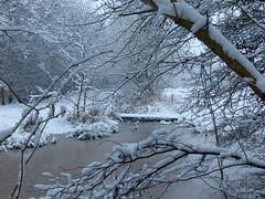 Bridge Over Frozen Water (Marit Buelens) Tags: winter belgië belgium westvlaanderen flanders gemeneweidebeek natuurreservaat natuurgebied snow sneeuw ice ijs bridge brug water pool poel