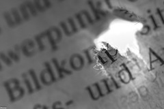 ... knowledge gap ... (wolli s) Tags: hmm macromondays wissenslücke bw knowledgegap macro makro newspaper holes mondays