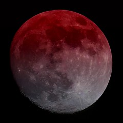 P1000190a nic gradua_user_def (oberbayer) Tags: mond moon blood blut selfmade