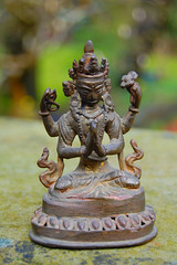 Avalokitesvara Bodhisattva (TREASURES OF WISDOM) Tags: bodhisattva avalokitesvara tara laxmi goddess tibetan quality wow wonderful worship what is this wisdom ritual religious tribal art tantric tibet yes unseen unusual unknown intresting item indian bronze idol om mani padmi hum pagan puja artefact artifact asian spiritual shamanic spirituality sacred shrine spirit sculpture statue deity fantastic faith figure god healing hindu himalayan saint love longevity look like kharchher buddha buddhist
