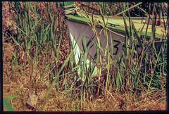 Delta del Ebro, años 90 (efe Marimon) Tags: diapositiva felixmarimon tarragona montsiá deltadelebro años90 barca