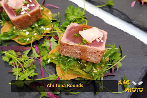 """Ahi Tuna Rounds • <a style=""""font-size:0.8em;"""" href=""""http://www.flickr.com/photos/159796538@N03/40634452903/"""" target=""""_blank"""">View on Flickr</a>"""