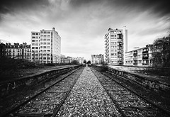 Petite Ceinture / small(er) ring railway (laurent.dufour.paris) Tags: 14mm 2018 24x36 3x2 black blackandwhite blanc bw candid canon capturestreets city darkisbetter dreaminstreets eos5dmarkiii europe everybodystreet everydayeverywhere extérieur france fromstreetswithlove generationstreet iloveparis iledefrance landscape lensonstreets life lifeisstreet lovesnoir matin monochrome morning noir noiretblanc noirshots objectifultragrandangle paris paysage people petiteceinture photographiederue printemps regardsparisiens rue spring storyofthestreet storyofthestreets streetfocuson streetphoto streetphotography streetphotographyinternational streetphotographer streetofparis streetoftheworld thestreetphotographyclub thestreetphotographyhub train urbex ville wearethestreets white worldstreetfeature zonestreet