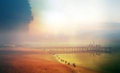 Mist. (augustynbatko) Tags: mist lake nature water autumn bridge pier fisherman birds trees fog sky landscape tree park road