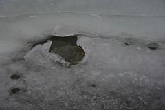 Sulailmaga Saaremaal (anuwintschalek) Tags: nikond7200 18140vr eesti estland estonia talv winter december 2018 saaremaa sula tauwetter thaw fof nebel udu jää ice eis meri sea see ostsee meer itämeri läänemeri baltic