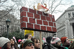 wall (greenelent) Tags: womensmarch foleysquare newyork nyc women protest notrump