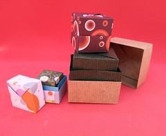 Scatole, boxes - Federico Scalambra (Stefano Borroni (Stia)) Tags: origami origamipaper origamicdo origamilove origamiart piegarelacarta arte folding foldingpaper papiroflexia carta scatola scatole box paper
