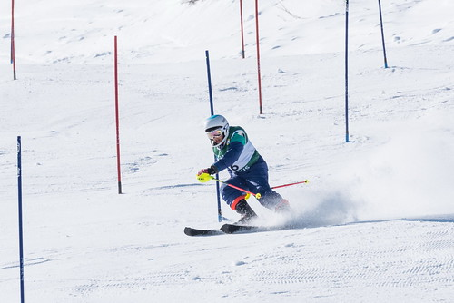 Alpine Races I & II 2019 3_03