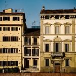 Florentines thumbnail