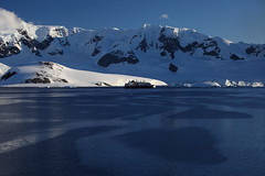 IMG_6870 (y.awanohara) Tags: cuvervilleisland cuverville antarctica antarcticpeninsula icebergs glaciers blue january2019