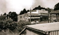 Bushfires approaching Leura, 1957 (Blue Mountains Library, Local Studies) Tags: bushfire shed clothesprop shops flats corrugatediron fruittrees