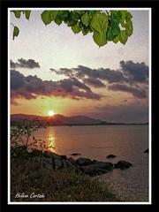 coucher de soleil (sunset) (hcortade) Tags: thailande oyage travel ile island samui monde world cth5 soir soleil coucherdesoleil sunset mer ciel sky nuages clouds arbre tree orange rouge eau groupenuagesetciel
