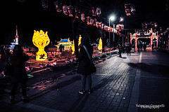 The year of the pig (Valentina Ceccatelli) Tags: year pig chinatown prato italy tuscany lunar china people street streetphotography folk dragons kids lanterns festival delle lanterne festa di primavera 2019 city città citylife cityscape culture cultura cinese cina