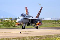 15-01  C.15-14 EF-18M  EF-18A-20-MC+  Zaragoza NTM 2016 (Antonio Doblado) Tags: 1501 c1514 ef18m ef18 f18 c15 aviación aviation aircraft airplane fighter zaragoza nato ntm tigermeet boeing mcdonnelldouglas