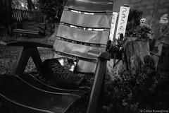 .. (Celso Kuwajima) Tags: leicam4 leicasuperangulon13421mm kodaktmax100 analogphotography cat 20190243 mairinque sãopaulo brazil br