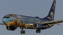 C-GWSV_LAS_Landing_26L_Frozen (MAB757200) Tags: westjet b7378ct cgwsv waltdisneysfrozen aircraft airplane airbus airport landing las klas boeing mccarran runway26l
