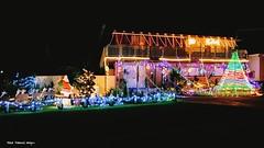 Christmas Lights 2016, Diamond Beach, Hallidays Point, NSW (Black Diamond Images) Tags: christmaslights colouredlights coloredlights xmaslights2016 diamondbeach nsw merryxmas iphonepanorama panorama hallidayspoint lights christmas 2emeralddrive appleiphone6splus iphone6s iphone