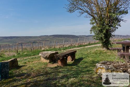 Schwabenheimer große Runde - Wandern im Selztal