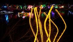 tendrils of lights (JoelDeluxe) Tags: rol riveroflights abq biopark nm december 2018 albuquerque biological park pnm light display colors lights sculptures fantasy newmexico hdr joeldeluxe