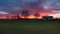 Sweden. Sunset.  25.02.19 (Solo Gala) Tags: landscape sunset sweden scandinavian skandinavia sky holiday countryside flickr trees nikond90 nature