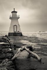 Imagination (Bert CR) Tags: slidersunday lighthouse winer toned creamtone monochrome lakehuron harbour entrance flotsamandjetsam jetty dock wet ice lr lightroom hss ss