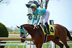 #1/119 - Lets get under way - 119 Pictures in 2019 (Krasivaya Liza) Tags: keeneland race track racing horse horses bet betting lexington ky kentucky field fields stable stables racetrack farm chicken chickens races 1 1119 lets get under way 119picturesin2019