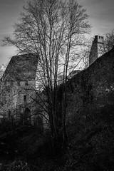 castle ruins (gotan-da) Tags: castle ruins gothic 14thcentury medieval blackwhite schwarzweiss noiretblanc blackandwhite bw monochrome