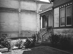 San Jose (bior) Tags: fujifilmga645zi ga645zi 6x45cm ilfordfilm ilford sanjose mediumformat 120 house yard lawn home panfplus panf