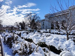 snow OAS (ekelly80) Tags: dc washingtondc january2019 winter snurlough snow snowstorm shutdown trumpshutdown snowday snowywalk white snowy organizationofamericanstates oas
