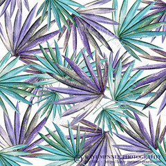 Aqua Purple Palm Pattern by Kaye Menner (Kaye Menner) Tags: aquapurplepalmpattern pattern palmpattern palmfronds fronds pinnae palms tropical tropicalpalms colorful palmsabstract abstract abstractpalms whimsical digitalart digitalpalms kayemennerphotography kayemenner walldecor modern illustration arecaceae happy whitebackground lines textures watercolor shapes kayemennerdigitalart white green aqua purple aquapurple purpleaqua whitepurpleaqua palmart tropicalart tropicalpattern wallart
