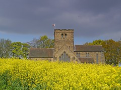 Golden Fields (4) St Mary's Church. (Kev's.Pix) Tags: nunthorpe northyorkshire fields oilseedrape countryscene countryside field flowers stmarys church