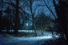 After Hail Storm One (Roderick van der Steen) Tags: sonyalpha sonya7s zeissmilvus50mmf14distagon zeiss milvus1450 f14 hailstorm hail winter evening blue green white lights shadows shadow dof netherlands handheld