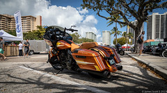 20190407 5DIV Bikes on the Beach 154 (James Scott S) Tags: fortlauderdale florida unitedstatesofamerica us bikes beach ft laud motorcycle custom show festival rally bagger tour harley davidson hd